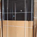 Israel Door (one and half )