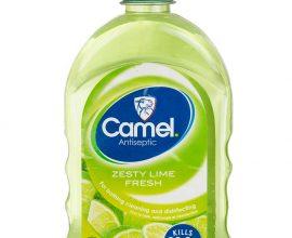 camel antiseptic