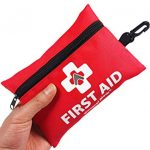First Aid Kit (Small Bag)