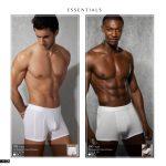 Essentials Mens Briefs ( White)