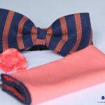 BLUE CITY navy blue and peach striped bow tie set