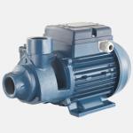 PENTAX-Electric(Peripherial)Water Pump-0.75HP(PM 65)