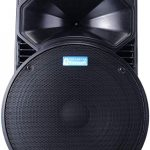 Luggage Speaker 15 inches