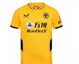 wolves jersey