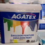 AGATEX Paint 5 Litrs