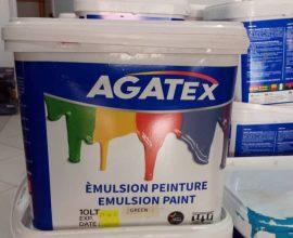 agatex paint