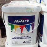 AGATEX Paint 18 Litrs