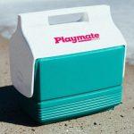 Igloo playmate mini 4 quart cooler