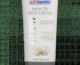 skin success face cream